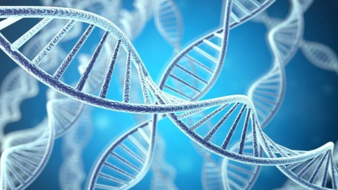 Difference Between DNA and RNA
