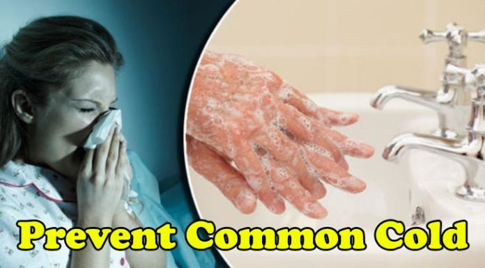 Ways to Prevent the Common Cold