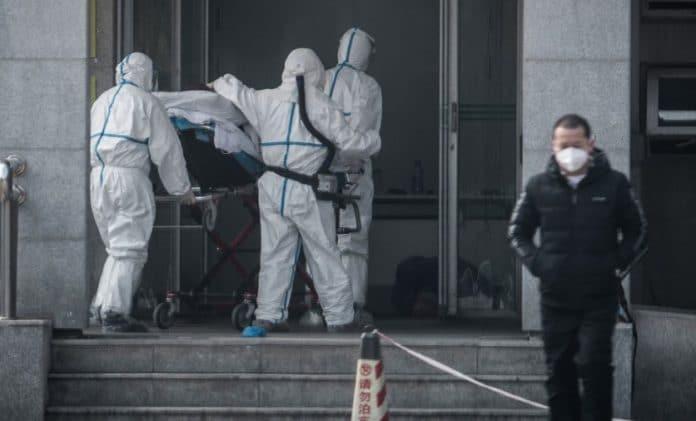 Corona virus kills 260 in China