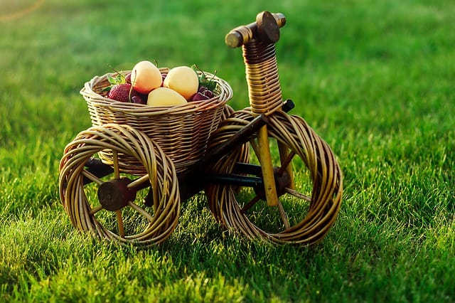 food bikes