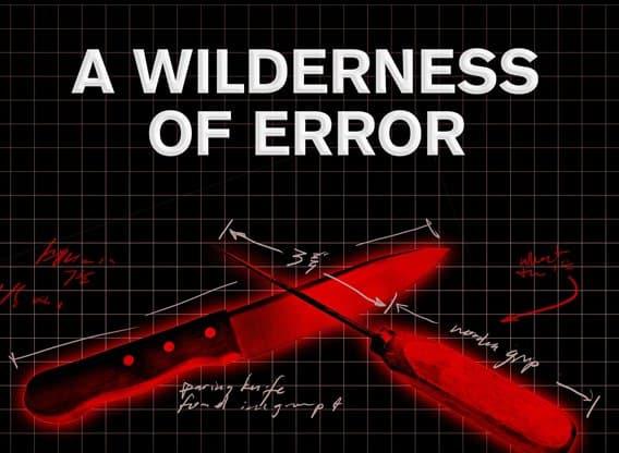 a-wilderness-of-error