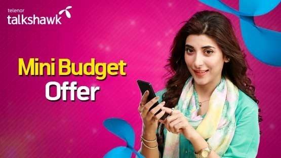 mini budget 1